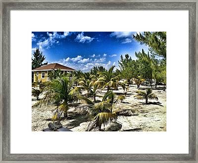 A Hot Day On Cocoa Plum Cay Framed Print by Amy Manley