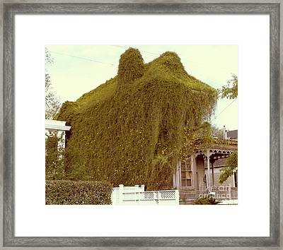 A House Is A Home Is A House Of Vine Framed Print by Michael Hoard