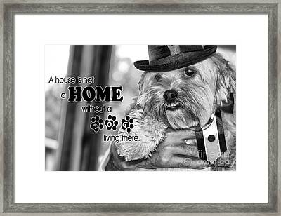 Framed Print featuring the digital art A House Is Not A Home Without A Dog Living There by Kathy Tarochione