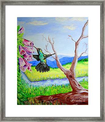 A Hummingbirds Day Framed Print