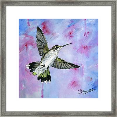 A Hummingbird's Pink Dream Framed Print by Brianna Mulvale