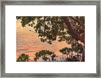 Framed Print featuring the photograph A Keys Sundown by Joetta West