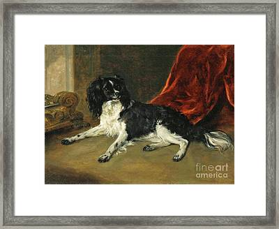 A King Charles Spaniel By A Fireplace Framed Print