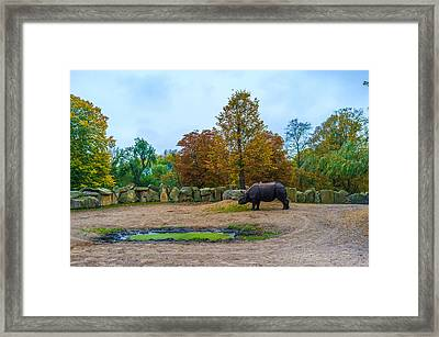 A Knight In Shining Armour Framed Print by Tgchan