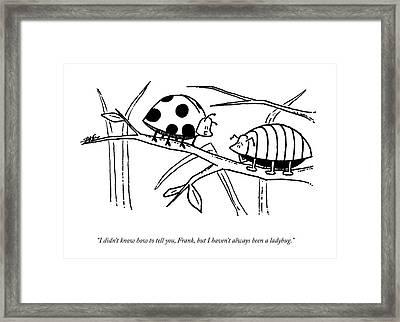A Ladybug Speaks To A Beetle Framed Print