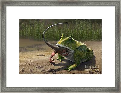 A Large Beelzebufo Frog Eating A Small Framed Print by Sergey Krasovskiy