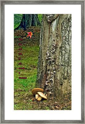 A Leaf Falls...loneliness Framed Print by Steve Harrington
