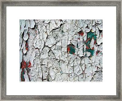 A Legacy In Peeling Paint Framed Print by Robert Knight