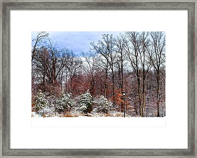 A Light Dusting Framed Print by Frozen in Time Fine Art Photography