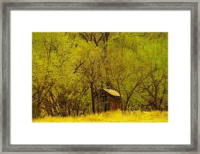 A Lincoln City Outhouse Framed Print