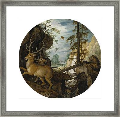 A Lion Hunting Two Deer Framed Print by Celestial Images