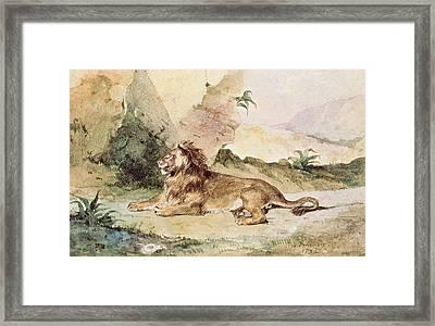 A Lion In The Desert Framed Print by Ferdinand Victor Eugene Delacroix