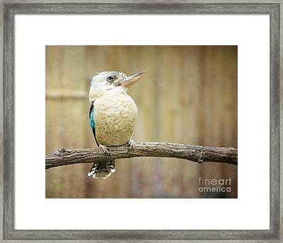 A Little Bird Told Me Framed Print