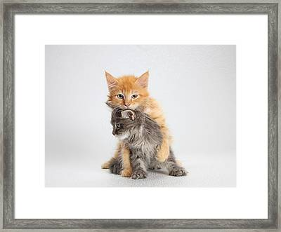 A Little Clingy Framed Print