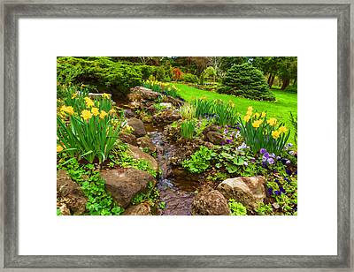 A Little Creek In The Garden - Impressions Of Spring Framed Print
