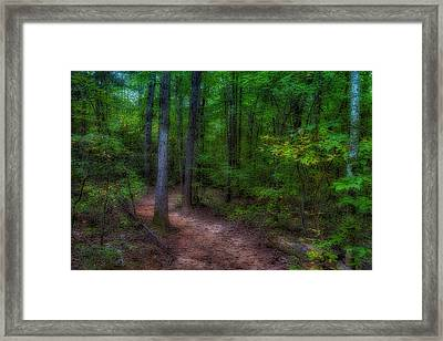 A Little Deviation Framed Print