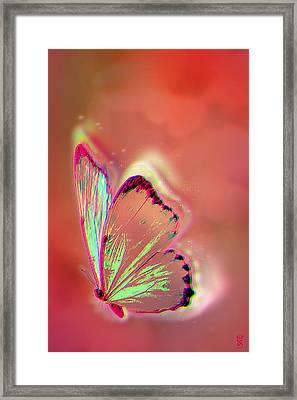 A Little Magic Framed Print by Li   van Saathoff