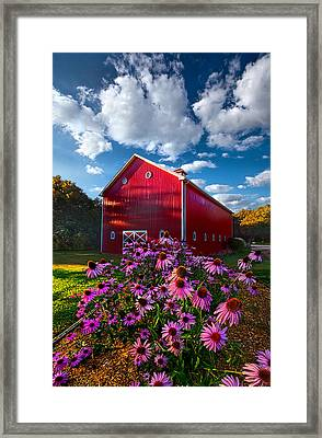 A Little More Country Framed Print