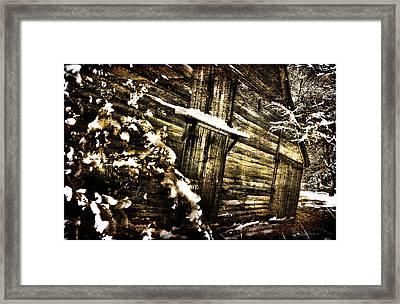 A Little Snow In Sc Framed Print