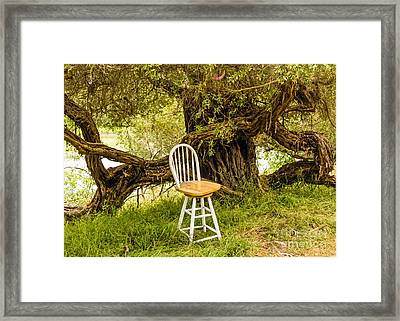 A Little Solitude Framed Print