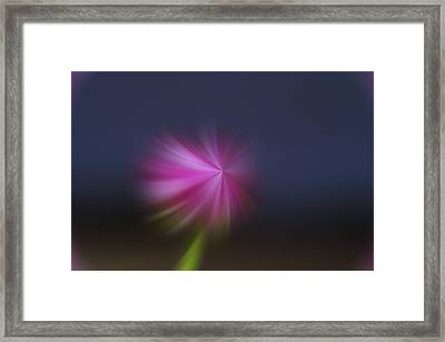A Little Whirled Lollipop Framed Print by Jeff Swan