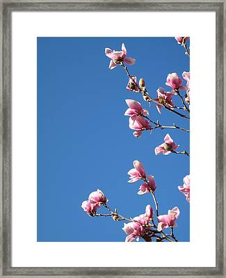 A Living Bouquet - 1 Framed Print