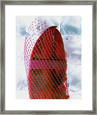 A Lobster Claw In Red Packaging Framed Print by Romulo Yanes