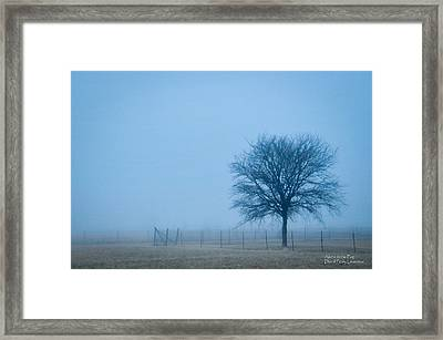 A Lone Tree In The Fog Framed Print