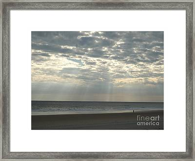 A Lone Visitor Framed Print by Marcia Lee Jones