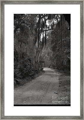A Lonely Road Framed Print by Debbie Bailey