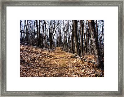 A Lonely Road Framed Print