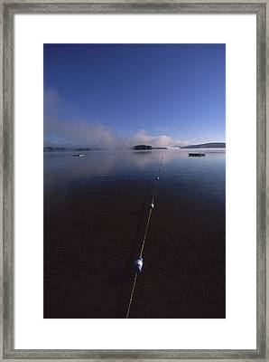 A Long Rope Tied On The River Framed Print