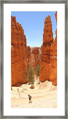 A Long Way To The Top Framed Print by Mike McGlothlen