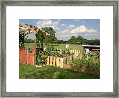 A Look At Growing Garden Framed Print
