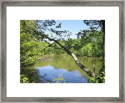A Look At Lake Framed Print by Good Taste Art