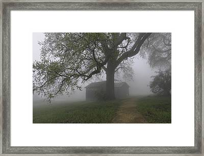 A Look Back In Time Framed Print by Lynn Bauer