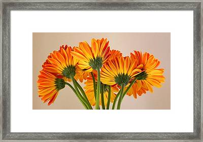 A Look From Behind Framed Print