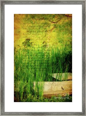 A Love Letter From Summer Framed Print by Lois Bryan
