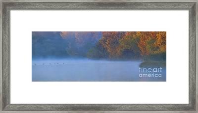 A Lovely Foggy Morning Framed Print