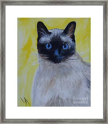 A Loving Siamese Framed Print by Leslie Allen