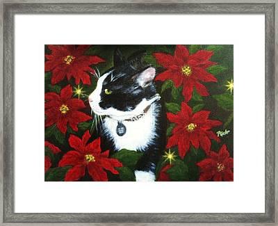Tuxedo Cat Trouble  Framed Print