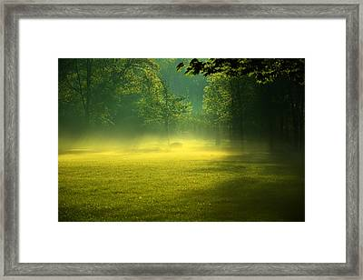 A Magical Place Framed Print by Valarie Davis