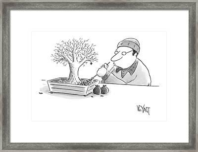 A Man Rakes Leaves In A Tiny Bonsai Tree Framed Print