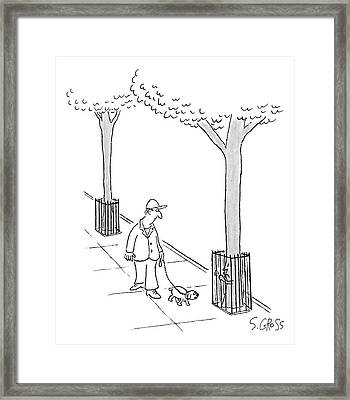 A Man Walks His Dog Past A Tree Which Holds Onto Framed Print
