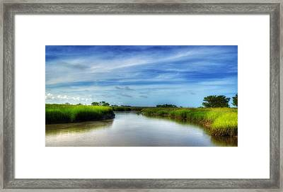 A Marsh At Jekyll Island Framed Print