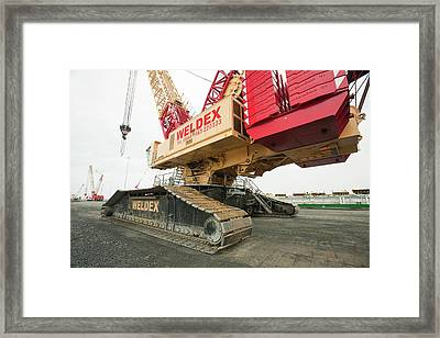 A Massive Crane Framed Print by Ashley Cooper