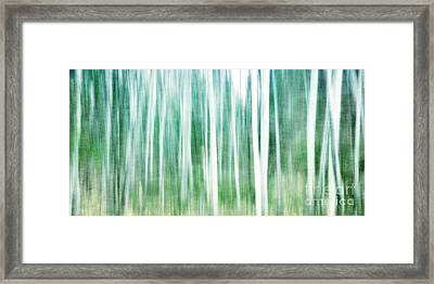 A Matter Of Blues Framed Print by Priska Wettstein
