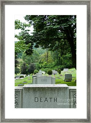 A Matter Of Life And Death Framed Print by Amy Cicconi