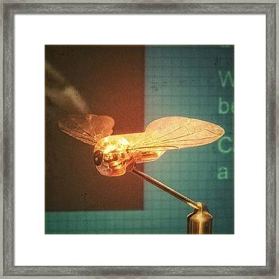 A #mechanical #fly From A #birmingham Framed Print