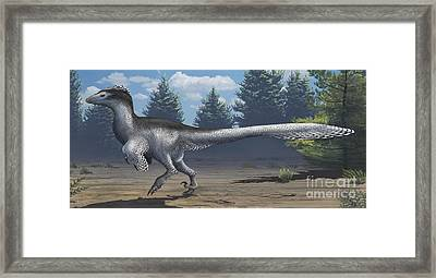 A Mid-sized Cretaceous China Framed Print